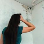 Schimmel im Wohnraum äußert sich durch dunkle und feuchte Flecken in der Ecke eines Raumes.