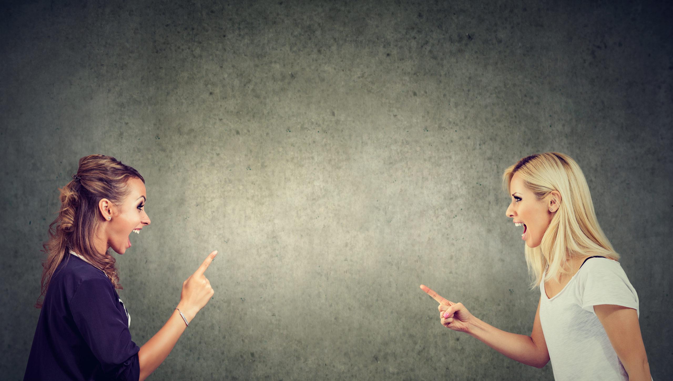 Nachbarschaftsstreit: zwei Frauen stehen sich gegenüber, schreien sich an und zeigen mit einem Finger jeweils auf den anderen.